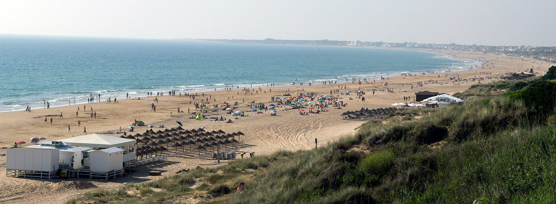 Autobús playa La Barrosa